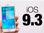 苹果将于3月15日发布iOS 9.3正式版