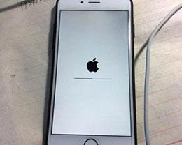 """苹果手机为什么出现无法开机显示""""白苹果""""?"""
