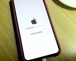 iOS 12 Beta 2降级会变砖!iOS 12 Beta 2降级变砖解决办法