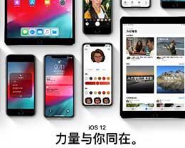 iOS12测试版和公测版如何升级iOS12.1.1正式版?