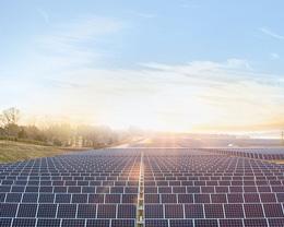 苹果与万家香酱油公司合作,共同开发太阳能电板