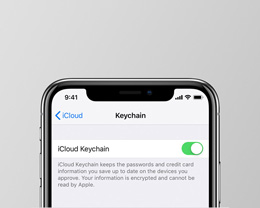 如何使用 iCloud 钥匙串管理和存储密码?