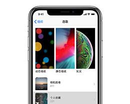 iPhone 11/11 Pro 将实况照片设置为动态壁纸的技巧