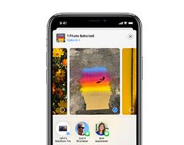无法在 iPhone 上使用隔空投送功能怎么办?