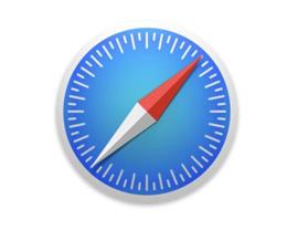 如何在 iPhone 和 iPad 上自定义 Safari 隐私和安全设置?