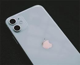 iPhone 11 如何在不清空数据的情况下恢复默认设置?