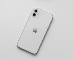 如何使用 iPhone 11 的「人像模式」拍摄非人物体?