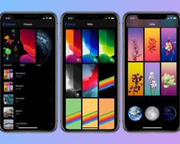 iOS 14 更多功能:Apple Pay 将集成支付宝,墙纸接入第三方应用