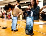 如何借助 iPhone 的「健身记录」应用管理健身活动?