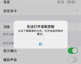 """iPhone 11 提示""""无法打开语音控制"""",无法下载需要的文件怎么办?"""