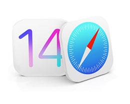 传 iOS 14 Safari 浏览器将增添自动翻译,优化对手写笔的支持