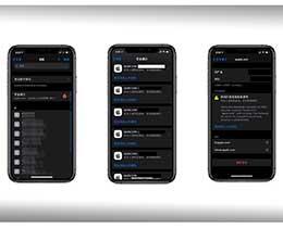 iOS 14 iCloud 云钥匙串改进网站弱密码建议与提醒功能
