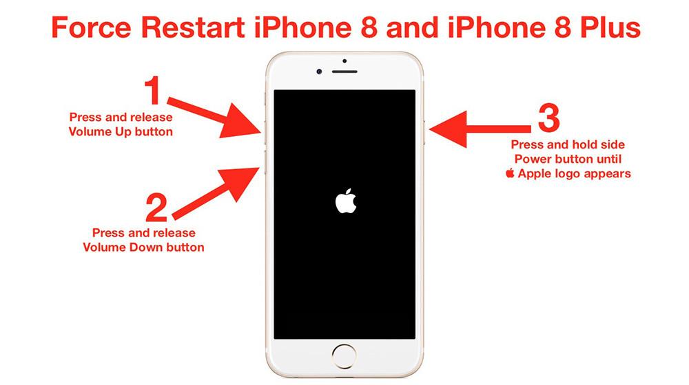 随后快速放开 最后按住侧边的电源键,直至看到苹果图标 长按音量-键和
