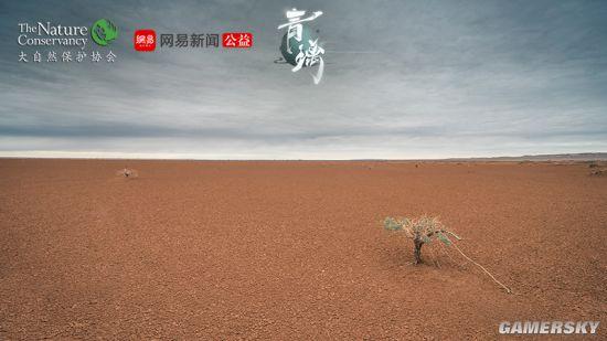 网易东方侠客独立新游《青璃》明日iOS正式上线