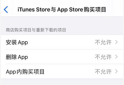 iOS 13 如何禁止下载应用和购买项目?
