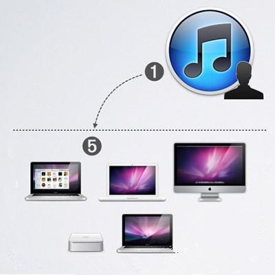 如何给电脑授权和取消授权?