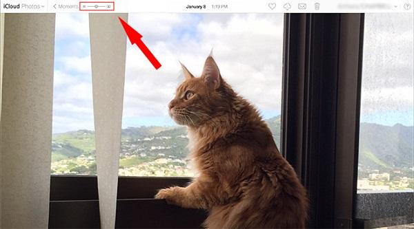 iCloud Photos增加手动缩放与分享功能