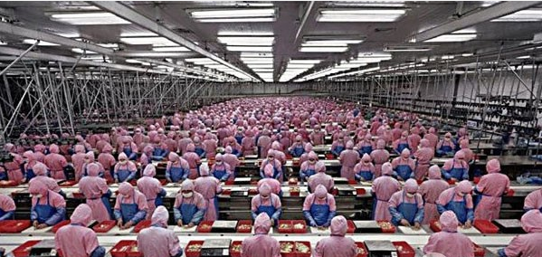 iPhone6s市场遇冷:富士康罕见安排春节不加班