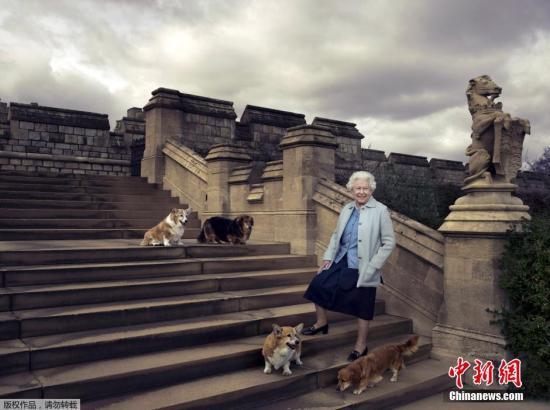英国王室全球招聘社交媒体专家