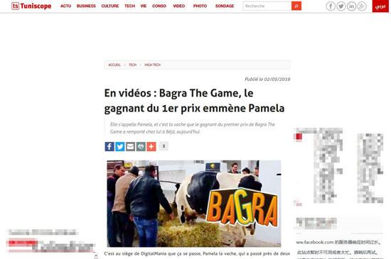 非洲人民多欢乐!突尼斯夫妇俩玩手游得赠奶牛