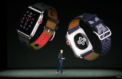 苹果给力!今年有两款新品被评为成功案例