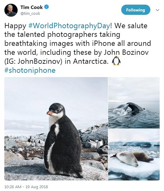 库克庆祝世界摄影日:iPhone拍照习惯了就离不开?