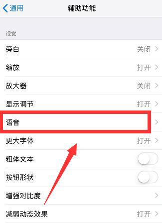 "iPhone 如何关闭或开启""朗读屏幕""功能?"