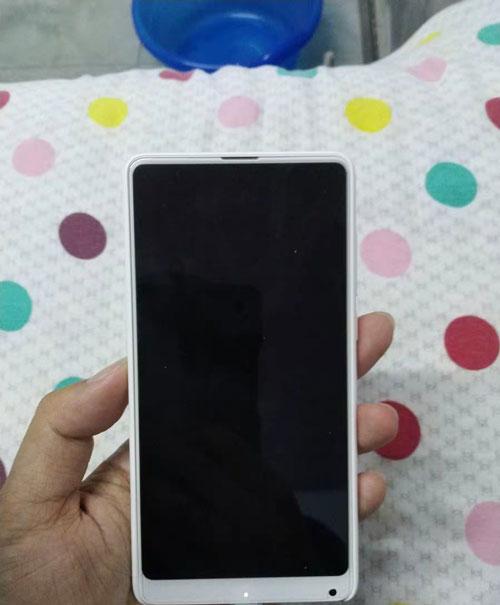 为什么正面是白色屏幕面板的 iPhone 逐渐消失?
