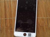 iPhone 6s,6s Plus 配货量曝光