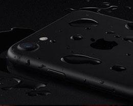 iPhone 完成出色的水下摄影?这或许不再是梦