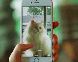 苹果推出新工具 Live Photos在网上分享更容易了