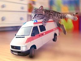 好游快荐:痛痛快快的撸猫《小猫咪》