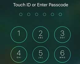 插件Accelerated Unlock :让非Touch ID用户更快解锁设备