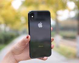 iPhone X山寨机横行:800元搞定