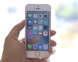 保留指纹!苹果新一代iPhone SE曝光 性能提升