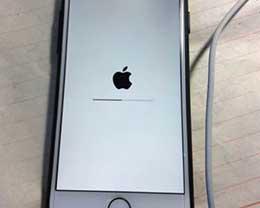 """iPhone什么时候会""""白苹果""""?怎么解决"""