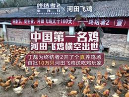 再也不愁吃不到鸡!丁磊给《终结者2》开了一家养鸡场