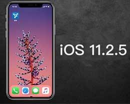 苹果发布 iOS 11.2.5正式版:为HomePod而生