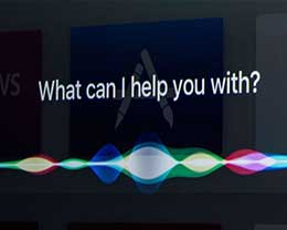 Siri创始人:苹果对Siri要求过高 不应操之过急