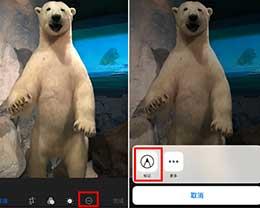 你注意到了吗?iOS原生图片标记有个小缺陷