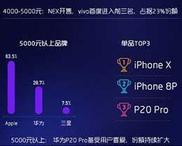 6月线下销量报告:华为、荣耀、OPPO位列前三,苹果冠绝旗舰梯队
