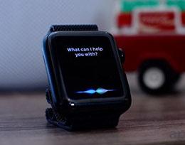 多用户支持: Siri可以为不同的声音提供响应