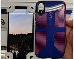 新iPhone保护壳上架沃尔玛:6.1寸和6.5寸着实不小