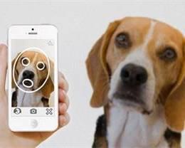 图像识别技术在 iPhone 上有哪些好玩的用途?