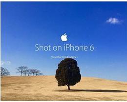 如何为 Apple 提供广告照片?附逆光拍照窍门