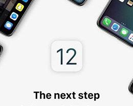 iOS 12.1.4或即将发布:修复FaceTime问题