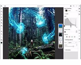Photoshop CC for iPad 现已开启 beta 注册