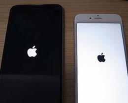 苹果iPhone手机突然死机了怎么办?