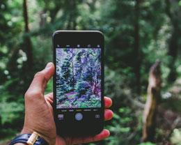 如何检查 iOS 在当前国家或地区所能提供的全部功能?