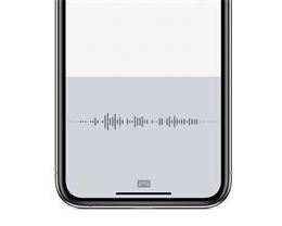 在 iPhone 上进行语音输入时,如何使用标点符号和格式?